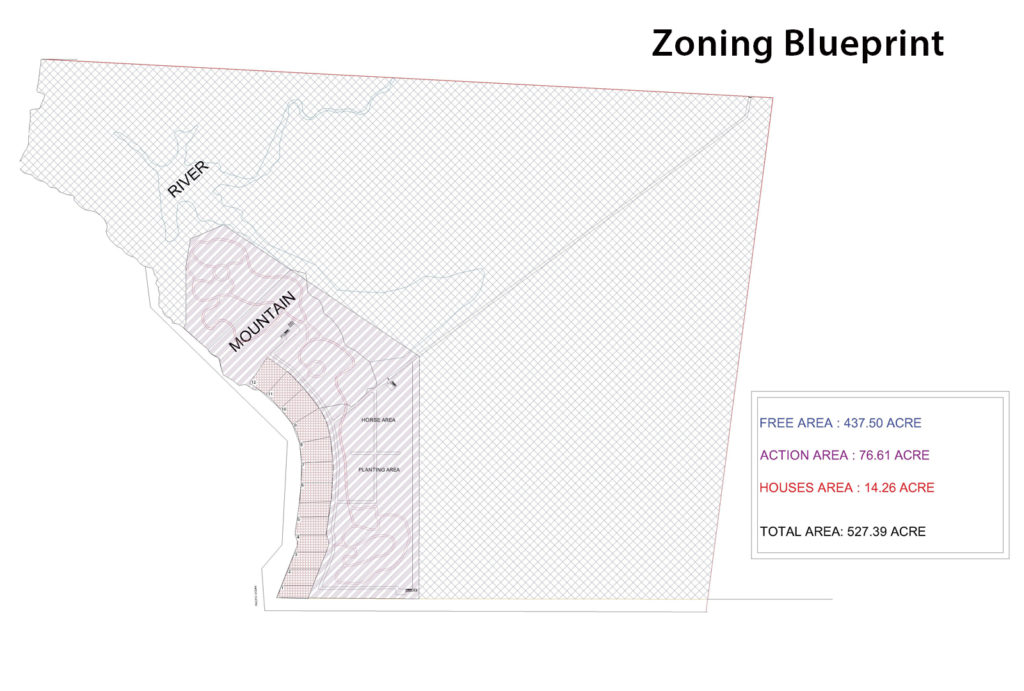 Zoning Blueprint